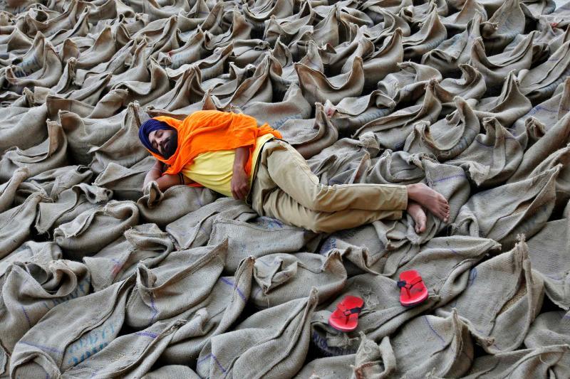 A farmer restsin Chandigarh, India, October 2016