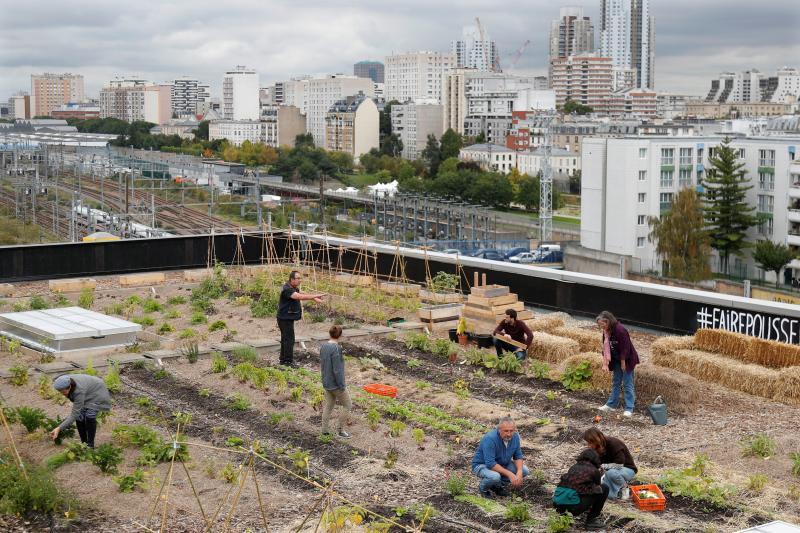 A rooftop vegetablegarden atop a post officein Paris, September2017