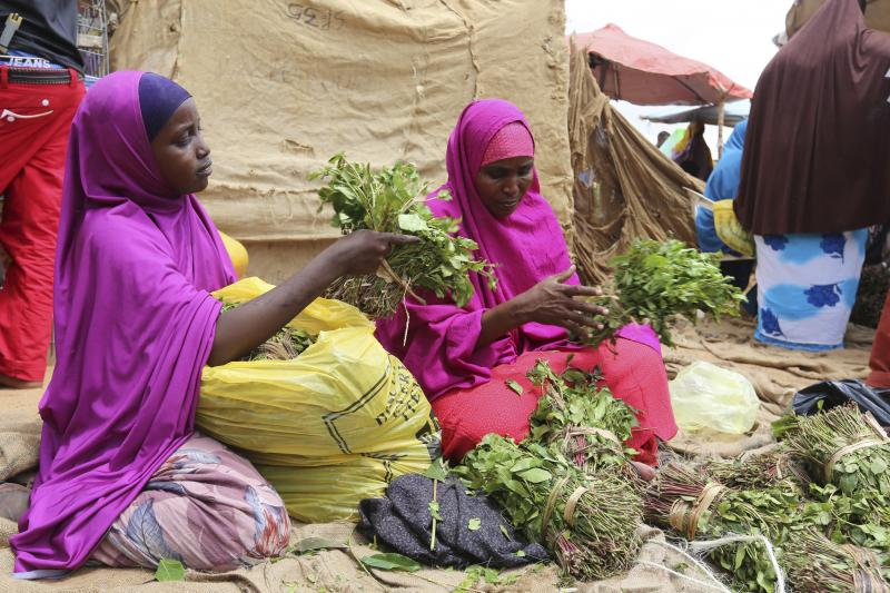 A woman and her daughter arrange branches of qat into small bundles in Mogadishu, August 9, 2014.