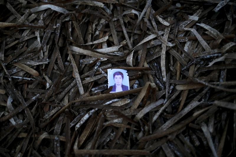 A passport photo left behind by a migrant is seen among seaweed on a beach on the Greek island of Lesbos, September 14, 2015.
