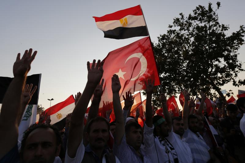 Supporters of Egypt's deposed Islamist President Mohamed Morsi and the Muslim Brotherhood wave Turkish and Egyptian flags during a rally in protest violence in Egypt, in Istanbul, August 17, 2013.