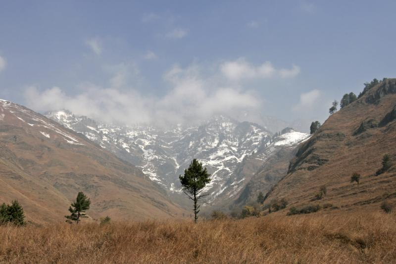 Dachigam national park in Indian Kashmir, November 2009.