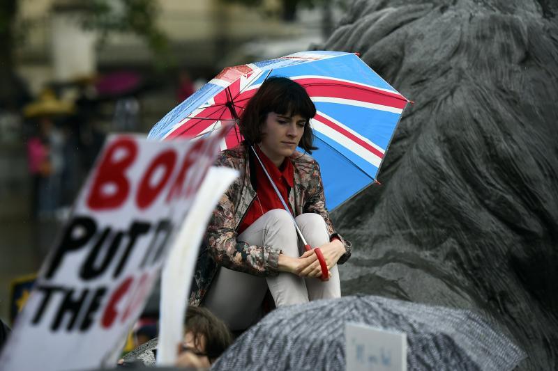 A demonstrator at a pro-EU rally in Trafalgar Square, June 2016.