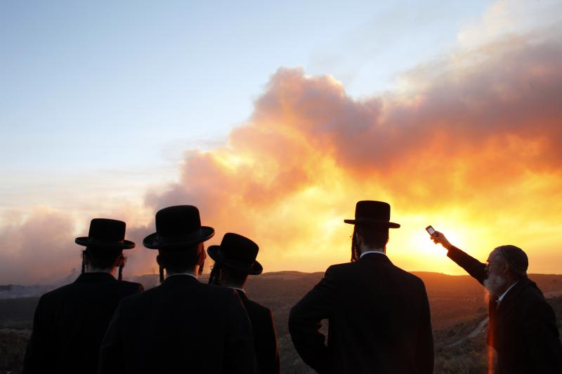 Orthodox Jewish men watch a forest fire in northern Israel, December 2010.